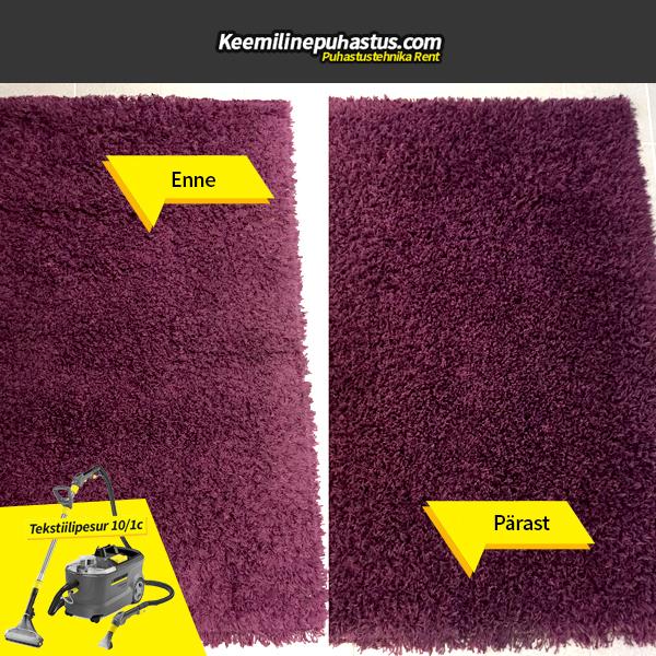 tekstiilipesuri rent